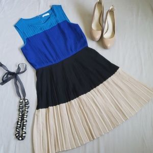 Calvin Klein Pleated Block Color Dress